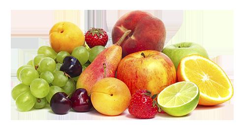 parma mario forniture frutta verdura tigullio